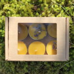 Mesilasvaha teeküünlad 6tk kinkekarbis