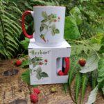 Metsmaasikaga tass