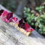 Palo Santo puitviiruk roosiga