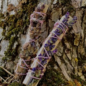 Kadaka puitviiruk aedsalvei/metssalveiga