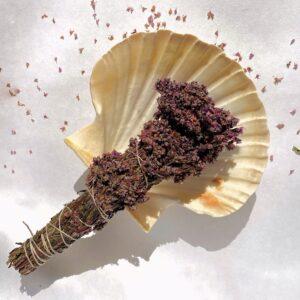 Pune suitsuküünal/tossukimp/lõhnakimp